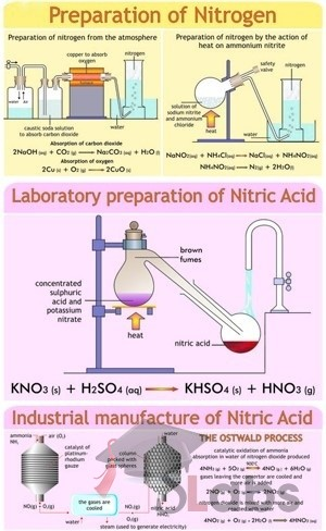 Preparation Of Nitrogen And Nitric Acid Chart Scholars Labs